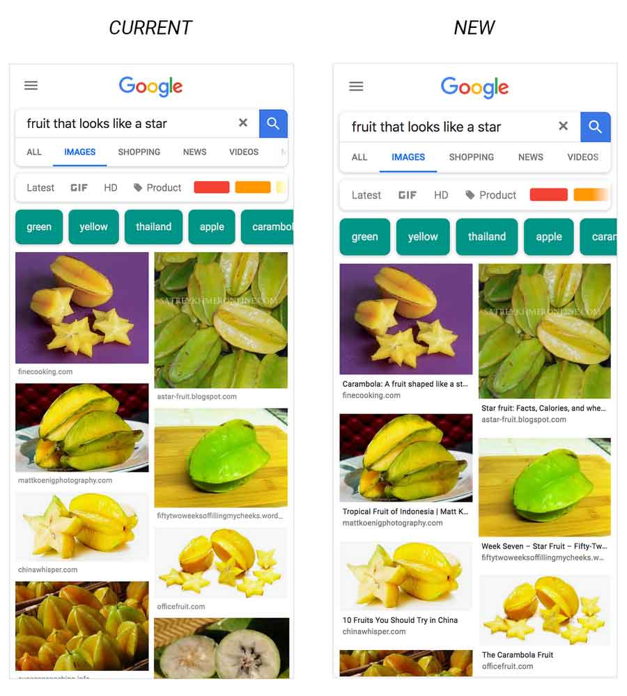 Google Image Update